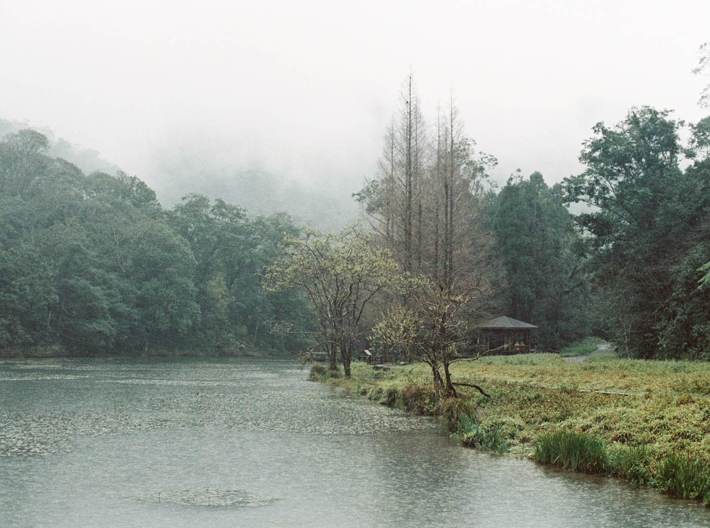 宜蘭福山植物園婚紗-The Stage-Mark Hong-唯諾禮服-